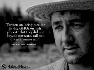 Farmers are being sued for having GMOs on their property that they did ...