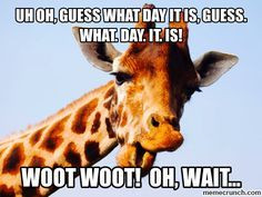 ... giraffe humpday wednesday quotes happy wednesday hump day quote happy