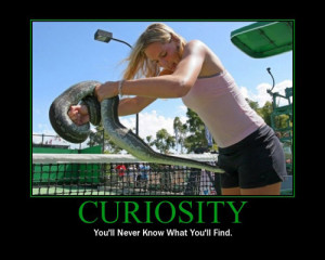 curiosity: you'll never know what you'll find