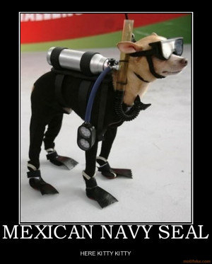 Download funny Humorous Military pictures