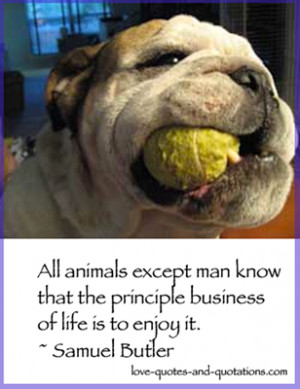 Love Animal Quotes - Quotes about a Love of Animals & the Environment