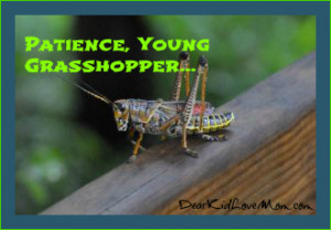 Ah, Young Grasshopper ... | Dear Kid, Love Mom