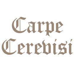 carpe_cerevisi_seize_the_be_bumper_bumper_sticker.jpg?color=White ...