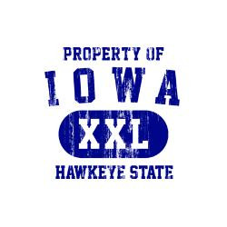 property_of_iowa_the_hawkeye_state_golf_balls.jpg?height=250&width=250 ...