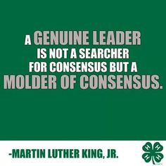 MLK quote More
