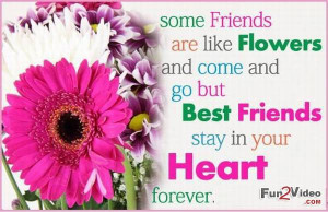 My best friend quote picture which is very nice and you really like ...