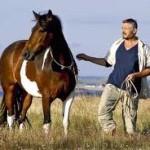 Horsemanship quotes om over na te denken!