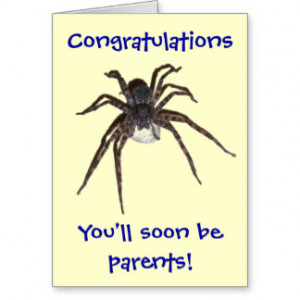 Dolomedes Congratulations Expectant Parents Greeting Card