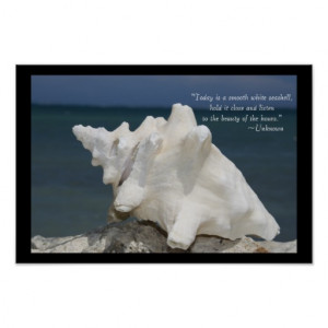Sea Shell Inspirational Poster Print