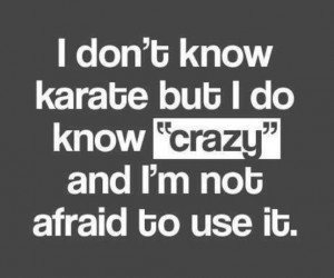 Quotes_I don't know karate
