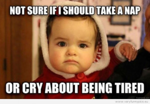 Funny Pictures - Not sure if i should take a nap or cry about being ...