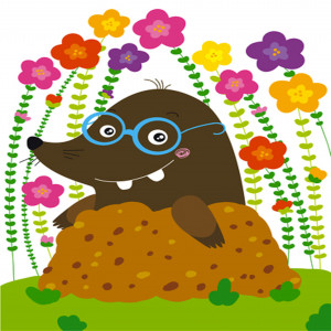 National Mole Day http://www.mybekins.com/mymovingnews/index.php/2012 ...