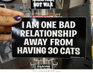 Cat Quotes Bad Relationship Quotes