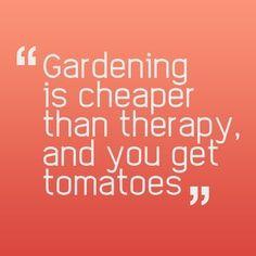 nothing like tomatoes
