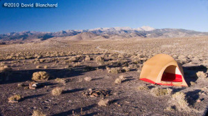 High desert camping in Nevada with early morning light on the White ...