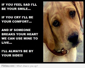 ... jpeg dog quotes sayings http www signscene co za pet quotes dogs html