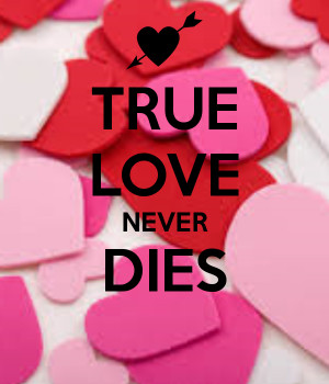 true love never dies true love never dies by