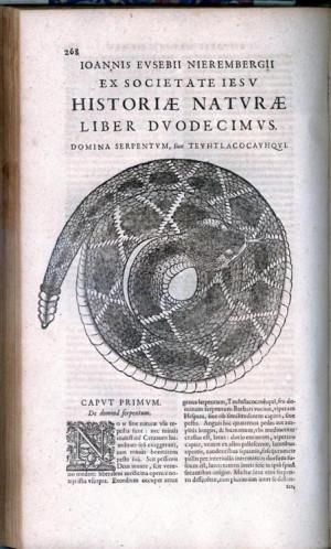 Juan Nieremberg, Historia Naturae Maxime Peregrinae, libris XVI ...