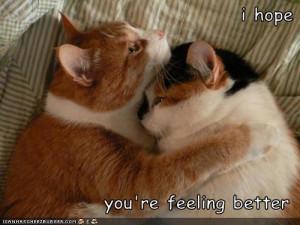 hope-youre-feeling-better-84155491586.jpeg#hope%20you%27re%20feeling ...