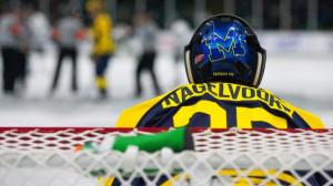 Michigan State Hockey