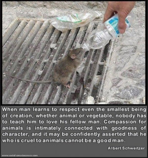 Compassion for animals picture quotes image sayings