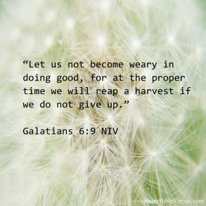 Let us not become weary in doing good, for at the proper time we will ...