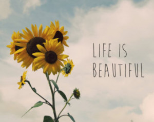 Sunflower Life Quotes Life is beautiful photo quote,