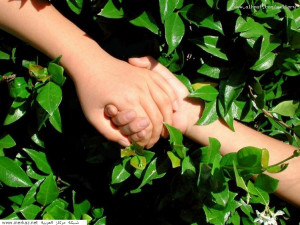 hand in hand we shall journey our path together hand in hand we shall ...