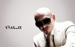 Pitbull Singer Wallpaper,Images,Pictures,Photos,HD Wallpapers