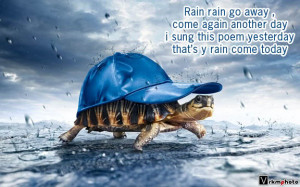 turtle rain vrkmphoto rainy day poem (turtle)