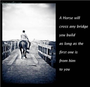 Horse Will Cross Any Bridge You Build