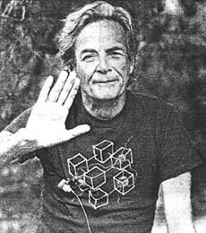 Richard Feynman and The Connection Machine