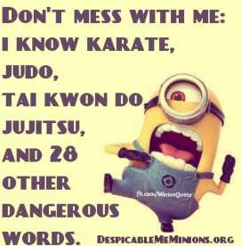 don t mess with me don t mess with me i know karate judo tai kwon do ...