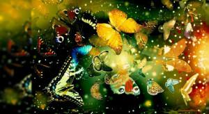 Butterflies - Inspiring colorful wallpaper