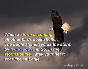 Life Quote: When a storm is coming, all other birds seek shelter…