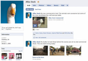 2nd aflac duck commercial
