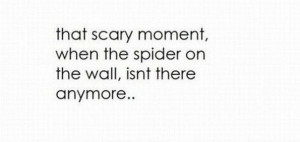 Oh geez... nothing worse... hate spiders
