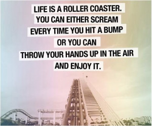 ... treasures and tidbits a nice bsc kids quote life is a roller coaster
