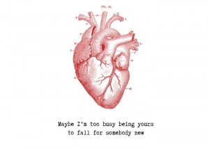 Arctic Monkeys - Do I wanna Know? Best line in the whole song,