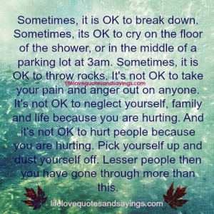 Sometimes It Is Ok To Break Down..