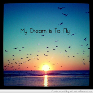 cute, fly dream, love, my dream is to fly, pretty, quote, quotes