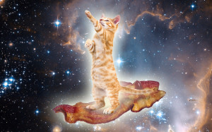 Bacon Space Kitty Magic Carpet Ride