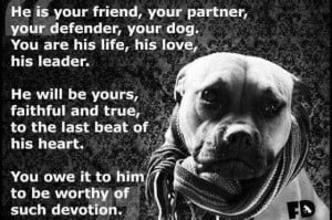 Pitbull Dog Quotes And Sayings Dog quotes