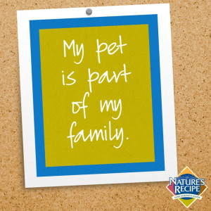 My pet is part of my family. #quote #pet