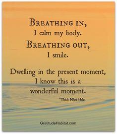 ... out. www.GratitudeHabitat.com #Thich-Nhat-Hahn-quote #present-moment