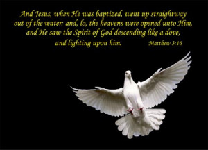 quotes for sympathy bible quotes viewing 16 quotes for sympathy bible ...