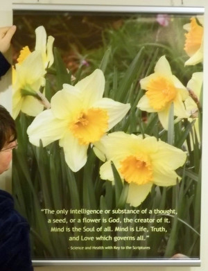Daffodils Quote Poster