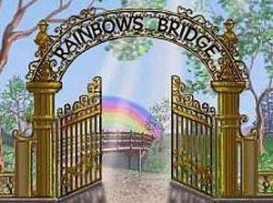 Dog Poem Rainbow Bridge gate