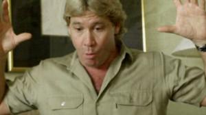 Steve Irwin - Mini Bio
