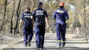 Clifton following the devastating bushfire Picture Daniel Wilkins